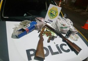 Armas de fogo ilegais e carnes de caça foram localizadas em Palmeira