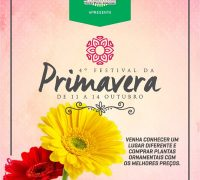 Cartaz do Festival da Primavera 2017.