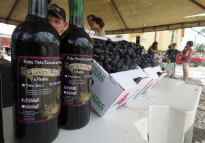 Feira da uva volta acontecer neste fim de semana em Palmeira