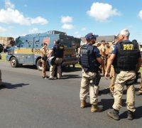 Segundo a Polícia Rodoviária Federal a ação começou por volta de 8h e 50min da manhã, quando os assaltantes atravessaram um caminhão bitrem na rodovia