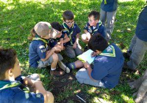 Grupo escoteiros Tropeiros inicia as atividades para 2018