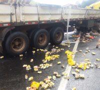 carreta trafegava na faixa de trânsito do sentido Curitiba a Palmeira
