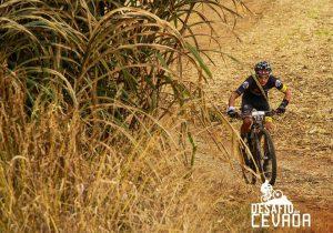 Witmarsum sedia festival de ciclismo