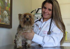 Veterinária explica benefícios da castração em cães e gatos