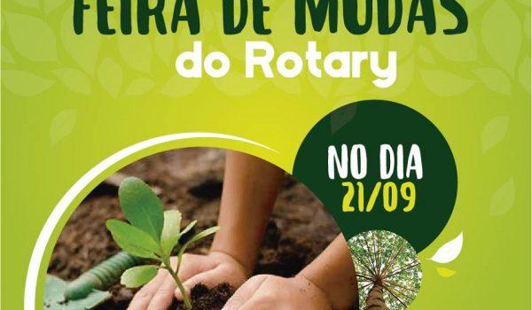 Rotay Clube de Palmeira promove feira de mudas neste fim de semana