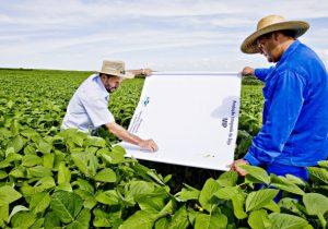 Emater e Secretaria de Agricultura e Pecuária promovem reunião sobreManejo Integrado de Pragas e de Doenças