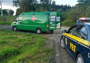 PRF e concessionária atendem acidente na BR 277, em Palmeira