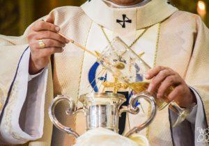 Sacerdotes estão reunidos na Catedral Metropolitana de Curitiba