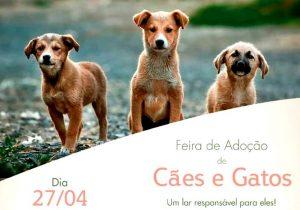 Aacarup promove mais uma feira de adoção no próximo sábado (27)