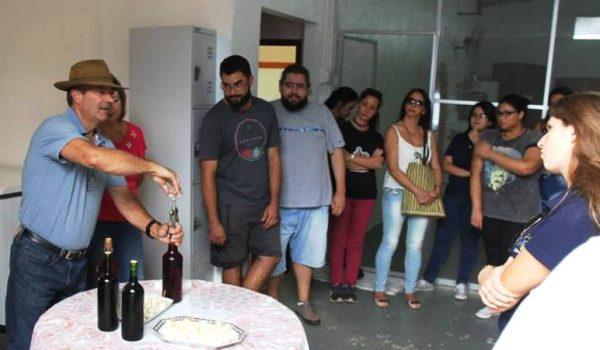 Acadêmicos de Turismo da UEPG visitam vinícola de Palmeira