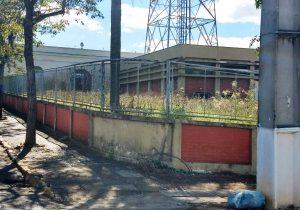 Limpeza do terreno aos fundos do Mercado Municipal continua sem solução