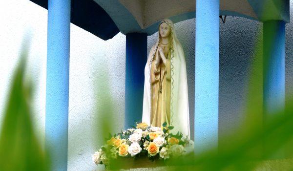 Ofereça flores e oração neste dia de Nossa Senhora de Fátima
