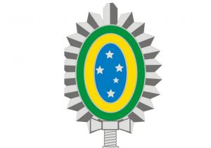 Exército alerta sobre presença de onças em Palmeira