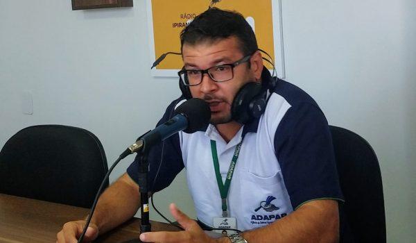 Campanha de vacinação contra aftosa será última no Paraná