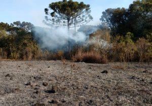 Polícia Ambiental deve aplicar multa de pelo menos R$ 49 mil por incêndio florestal no interior de Palmeira