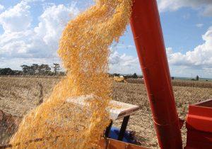 Nova estimativa do Deral mostra que Paraná deve atingir mais de 23 milhões de toneladas de grãos