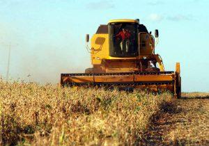 Deral prevê quase 20 milhões de toneladas de soja no Paraná