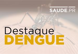 Paraná registra 89 casos de dengue em uma semana