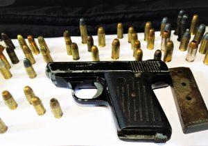polícias Civil e Militar do Paraná apreendem mais de 4.600 armas de fogo