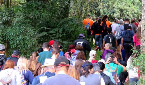Caminhadas na Natureza terão 160 circuitos no Paraná neste ano, entre eles em Palmeira