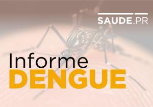 Paraná tem 88 mil casos confirmados de dengue