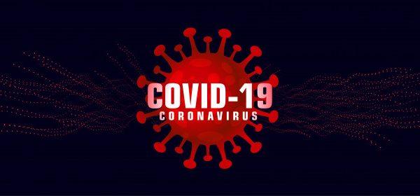Secretaria de Saúde atualiza boletim da Covid-19 em Palmeira