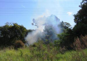 Realizar queimadas é crime ambiental - saiba como denunciar