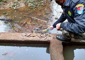 Polícia Ambiental atende denúncia de poluição no Rio Capivara