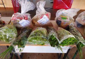 Educação realiza entrega de alimentos da agricultura familiar para alunos do município