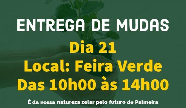 Secretaria Municipal de Meio Ambiente distribuirá 800 mudas de árvore no Dia da Árvore